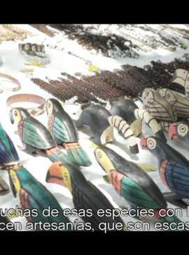 Web09 Ecoturismo