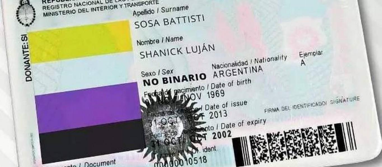 La medida contempla sumar la categoría 'X', además de 'F', para el femenino y 'M', para el masculino, en el DNI y el pasaporte a fin de contemplar el derecho a la identidad de género. (Tomada de Twitter (@NatiGradaschi))