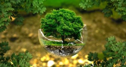 La ONU acuerda redoblar la lucha mundial contra los problemas medioambientales
