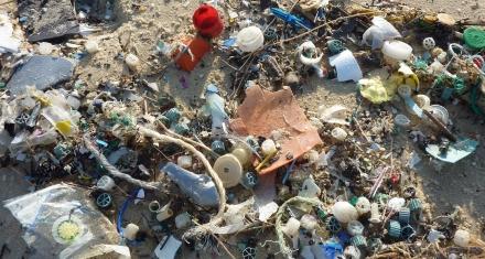 Argentina: Más del 80% de los residuos en las playas bonaerenses son plásticos