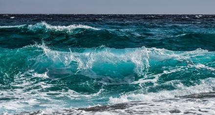 Trabajan sobre un borrador para proteger los océanos