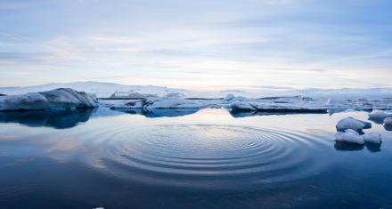 Ártico: Alerta científica por una fuerte ola de calor antes de que llegue el verano