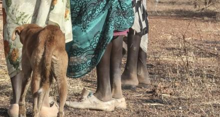 Sudán del Sur: Denunciaron violaciones a niñas y mujeres
