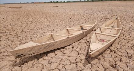 Los suelos suelen ser los grandes olvidados en las políticas climáticas de la UE.