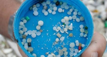 Por primera vez encuentran microplásticos en heces humanas
