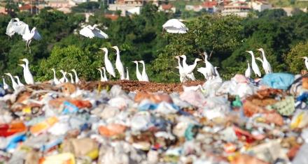 Casi 200 países acuerdan la primera regulación al tráfico de residuos plásticos en los océanos