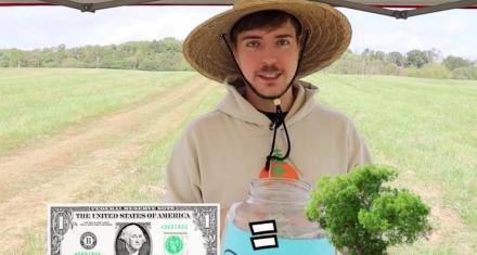 Youtubers e influencers quieren sembrar 20 millones de árboles alrededor del mundo