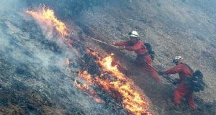 EEUU: el 90% de los incendios forestales del 2017 causado por el hombre