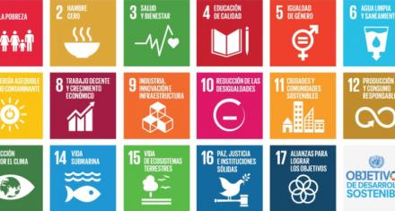 Cómo es el sistema computacional que promueve la ONU para combatir la desigualdad en el mundo
