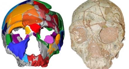 Earliest modern human found outside Africa