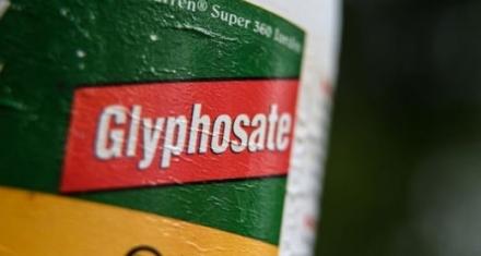 Pesticidas altamente peligrosos son vendidos a los países menos desarrollados
