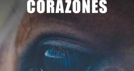5 CORAZONES : El documental de Posibl. que busca ponerle fin a la faena equina y la exportación de carne de caballo en Argentina