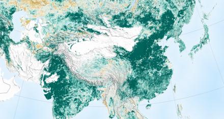 La Tierra más verde que hace 20 años