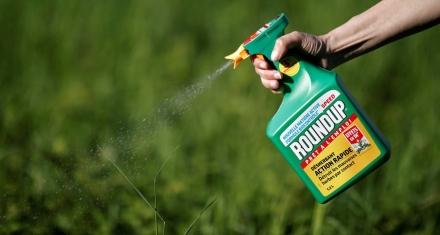 Monsanto pide repetir el juicio que le condena a pagar 289 millones de dólares