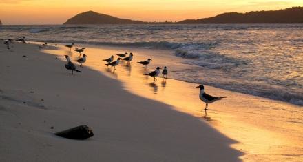 Se prevé sequía en el Caribe por la presencia de El Niño
