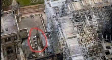 ¿Qué pasó con las 150 mil abejas que vivían en el tejado de Notre Dame?
