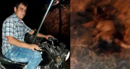 Salta: Condenan a 3 años de prisión condicional a un hombre que mató a un perro a machetazos