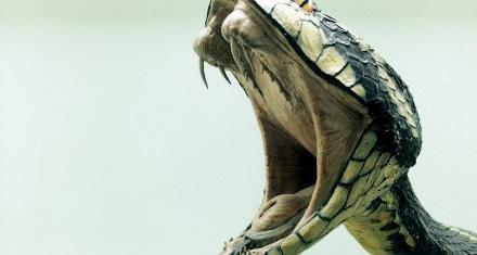 Científicos descubren receta para el veneno de la serpiente