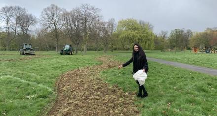 Londres: Crean un corredor verde urbano para proteger las abejas