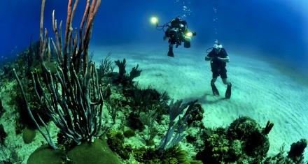 El calentamiento del mar hace que los depósitos submarinos liberen gas de efecto invernadero