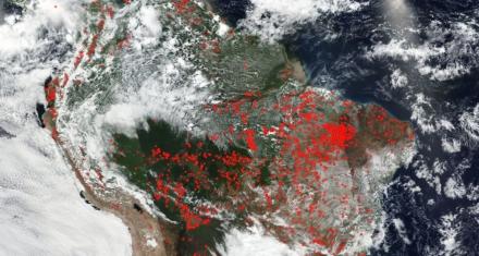 Mapa que muestra los incendios activos en el planeta