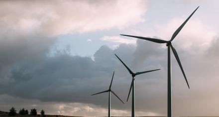 México: Presentan un plan ambiental basado en el desarrollo sostenible para cuatro años