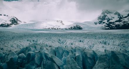 Investigadores proponen medidas para evitar que covid llegue a la Antártida