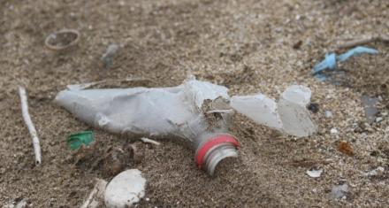Argentina: Consecuencias de los residuos plásticos en las playas bonaerenses
