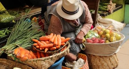 La producción de alimentos a nivel mundial solo alcanza para alimentar al 44% de la población