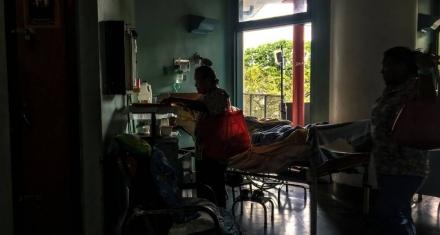 Venezuela: Un caso de fiebre amarilla enciende la alarma sanitaria