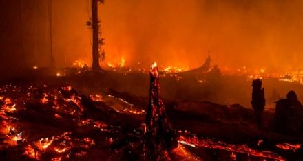 El humo de los incendios de Indonesia ahoga al Sudeste Asiático