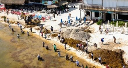 Mañana se realizará una jornada de limpieza de playas en Ecuador