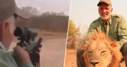 Brutal asesinato de un león dormido