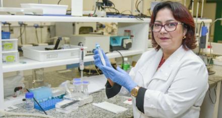 Brasil: Científicos desarrollaron una partícula para revertir los efectos de sobredosis de cocaína