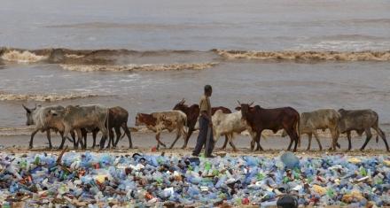Los plásticos están en el agua, el pescado, la sal y todo lo que llevamos a nuestra mesa