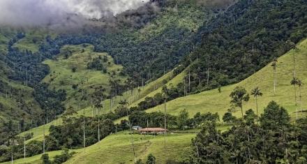 Colombia y el desafío de proteger su enorme biodiversidad