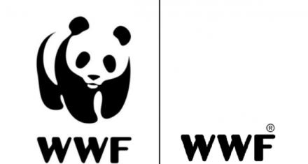 WWF elimina el panda de su logotipo para denunciar pérdida biodiversidad