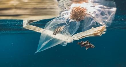 Plástico de los oceános convertido en ropa