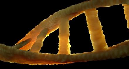 DNA to unlock coronavirus secrets