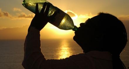 La OMS insta a investigar el impacto de los microplásticos en la salud