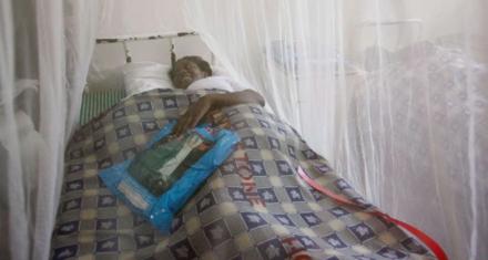 Venezuela: Ascienden a 1 millón los contagios por malaria