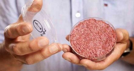Alimentos de laboratorio: La opción sustentable para reemplazar la carne