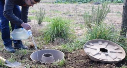 Nuevo método biodegradable que multiplica la eficacia de la reforestación