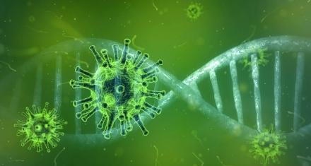 Qué se sabe sobre la mutación del virus y que significa esto para la lucha contra la pandemia