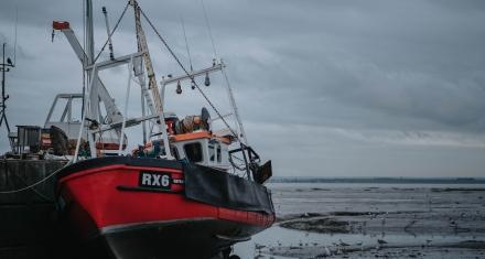 Eurocámara pide que la UE se desprenda del CO2 del sector marítimo para 2050