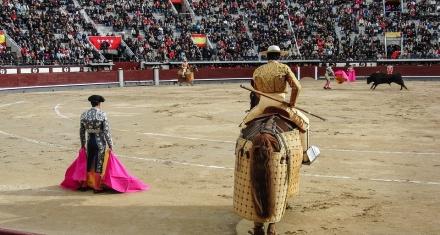 España: Entidades animalistas se oponen a que los festejos taurinos reciban ayuda por el coronavirus