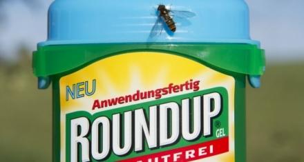 Monsanto condenada a pagar 289 millones de dólares a un hombre con cáncer