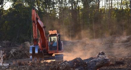 Argentina: Greenpeace denuncia el aumento de la deforestación en 2020