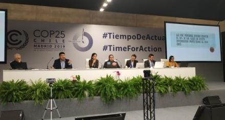 COP25: Expertos instan a aumentar compromisos ambientales en Latinoamérica