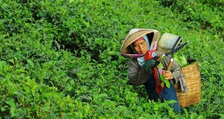 Sólo el 12% de los países protege a las mujeres del impacto económico y social de la pandemia